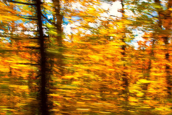 Photograph - Fall Motion by Michael Hubley