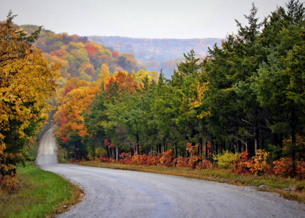 Mo Photograph - Fall On Fox Hollow Road by Cricket Hackmann