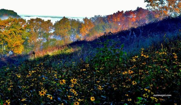 Photograph - Fall On Garvin Heights by Susie Loechler