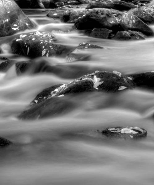 Nantahala Photograph - Fall On The River In Black And White by Greg and Chrystal Mimbs