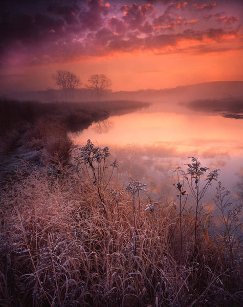Photograph - Fall Pastels by Ray Mathis