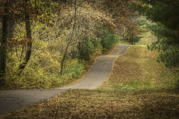 Wall Art - Photograph - Fall Path by Thomas Young