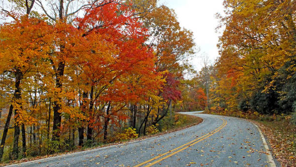 Photograph - Fall Peak Along Slick Fisher Road by Duane McCullough