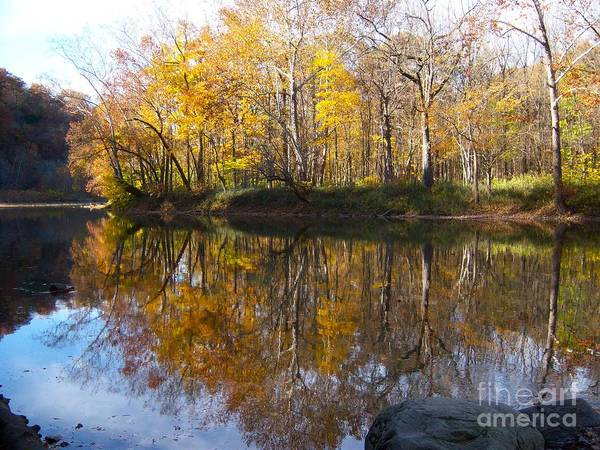 Photograph - Fall Perfection/shades State Park by Pamela Clements