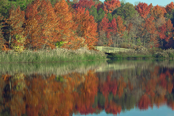 Photograph - Fall Reflected by Jerry Gammon