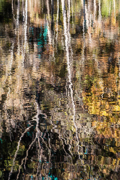 Photograph - Fall Reflection 6 by Karen Saunders