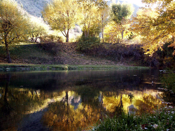 Photograph - Fall Reflection by Tarey Potter