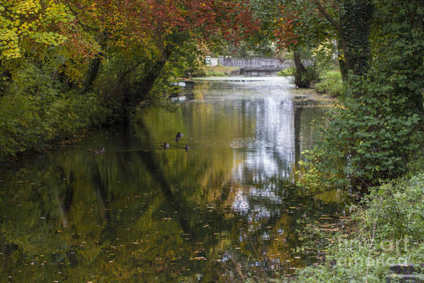 Photograph - Fall Reflections. by Clare Bambers