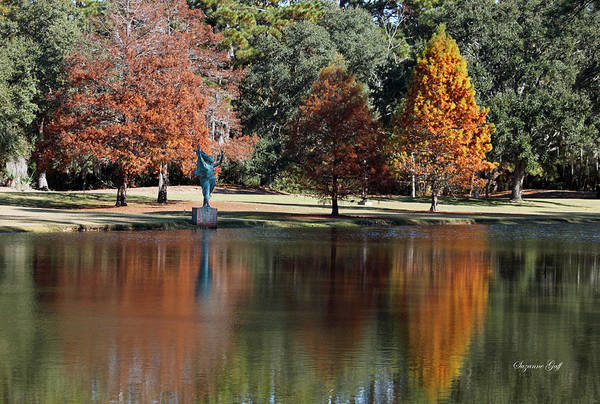 Seasonal Wall Art - Photograph - Fall Reflections II by Suzanne Gaff