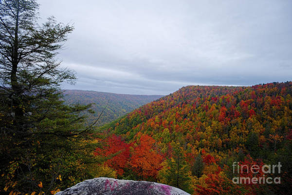 Photograph - Fall Scene From Overlook Neat Thomas Wv by Dan Friend