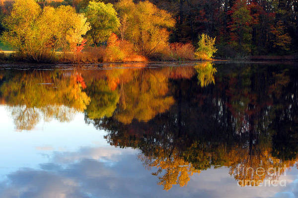 Photograph - Fall Scene by Olivier Le Queinec