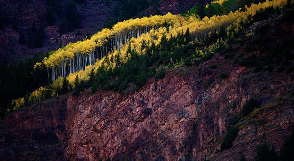 Wall Art - Photograph - Fall Season In Maroon Bells State Park by Kevin Vandivier