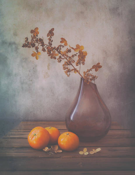 Glass Vase Photograph - Fall by Sophie Pan