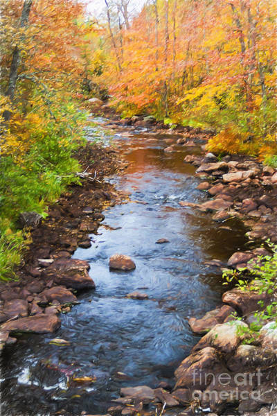 Photograph - Fall Stream by Lori Dobbs