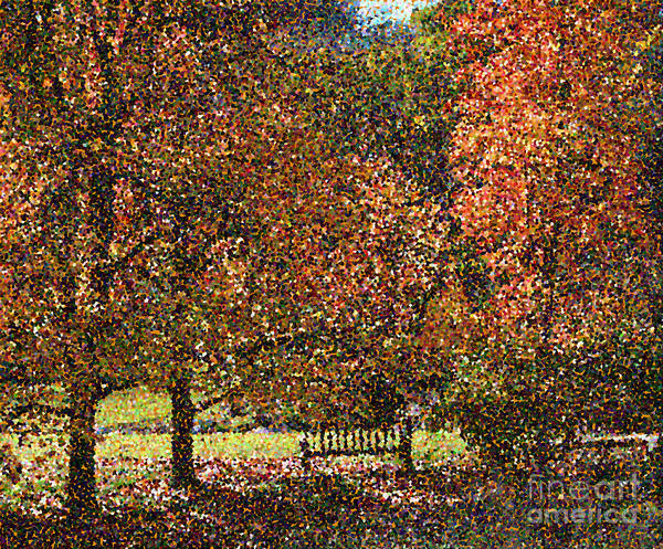 Park Bench Digital Art - Fall Trees by Nicholas Burningham