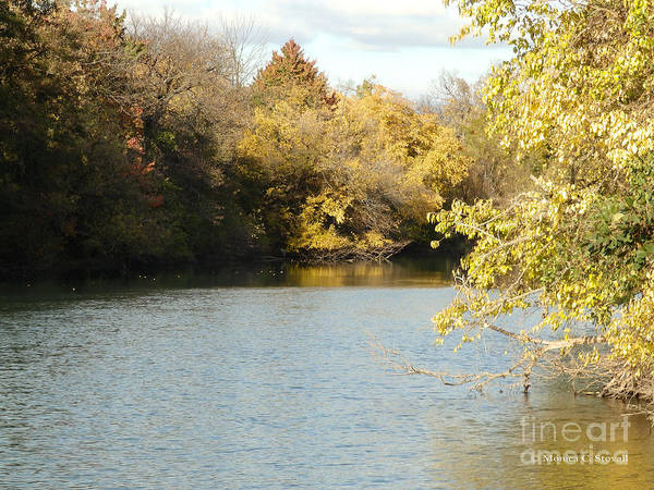 Photograph - Fall Tress Along Canal - M Landscapes Fall Collection No. Lf25 by Monica C Stovall