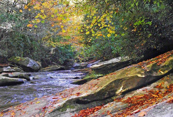 Photograph - Fall Waterfall by Duane McCullough