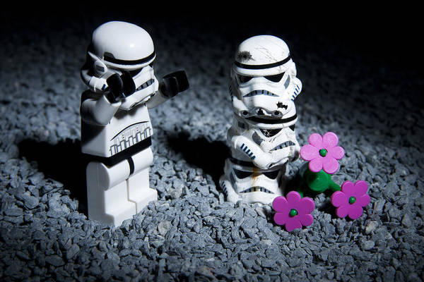 Toy Photograph - Fallen Friends by Samuel Whitton