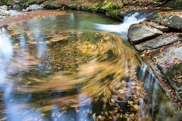 Franconia Notch State Park Photograph - Fallen Leaves Swirl In A Deep Clear by Robbie George
