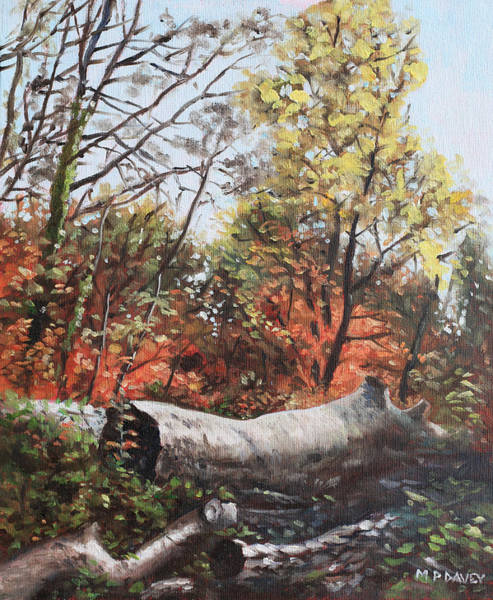 Wall Art - Painting - Fallen Trees On Southampton Common During Autumn by Martin Davey