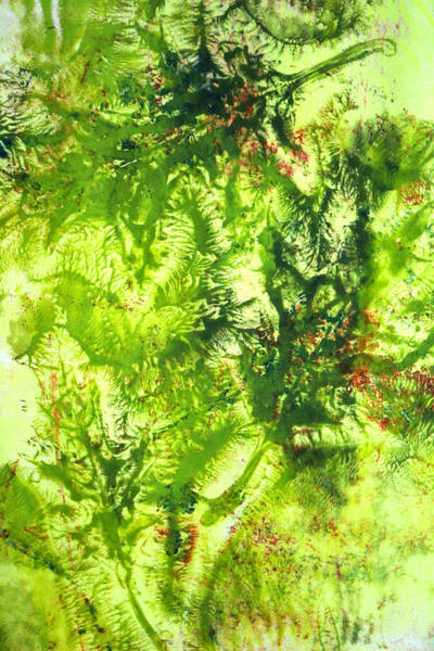 Wall Art - Painting - Falling Leaves Abstract Art by Nancy Merkle