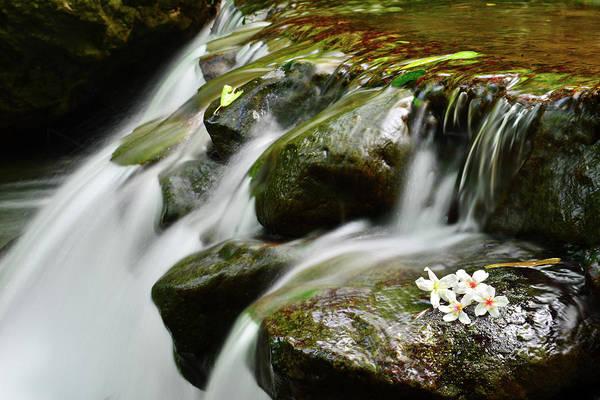Taiwan Photograph - Falling Water by Taiwan Nans0410