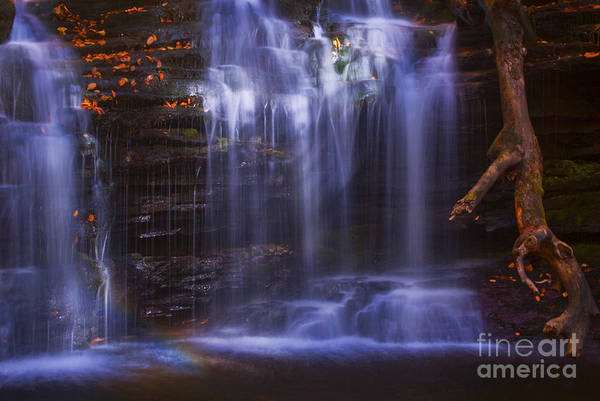 Wall Art - Photograph - Falls And Log by Paul W Faust -  Impressions of Light