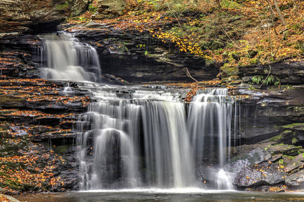 Falls At Ricketts Glen Art Print by Zev Steinhardt