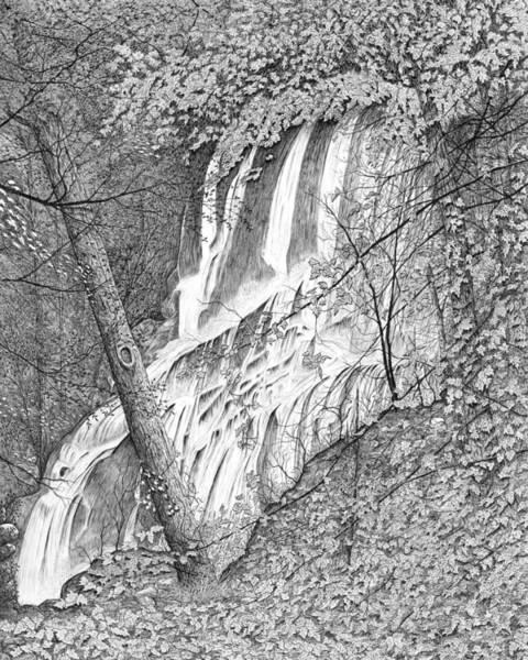 Drawing - Falls by Carl Genovese