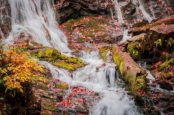 Photograph - Falls End  by Lynn Bauer