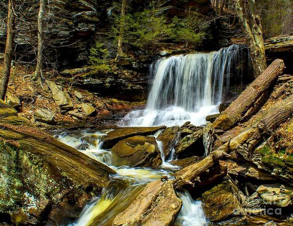 Photograph - Falls In The Woods by Nick Zelinsky