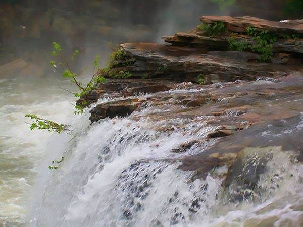 Wall Art - Photograph - Falls Of Alabama by Mechala Matthews