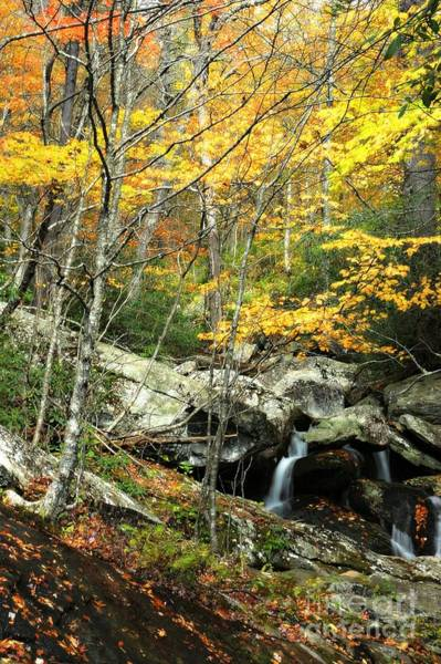 Linville Falls Wall Art - Photograph - Falls Of Autumn by Benanne Stiens