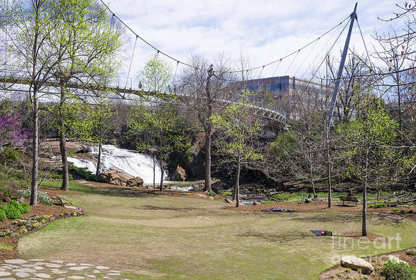 Photograph - Falls Park On The Reedy Greenville by Steven Ralser
