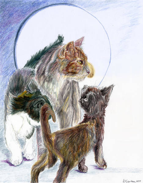 Clowder Wall Art - Drawing - Family Of Cats by Angela Courtney