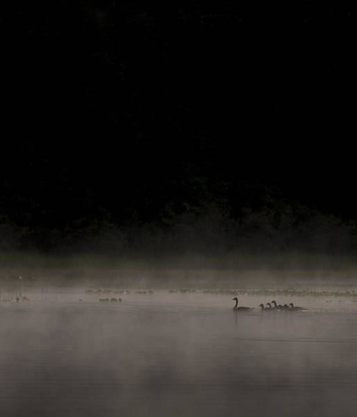 Duck Hunt Photograph - Family On The Lake by Aaron Bedell