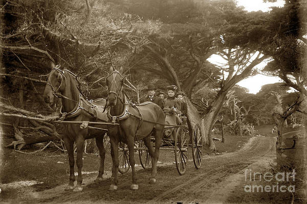 Family Out Carriage Ride On The 17 Mile Drive In Pebble Beach Circa 1895 Art Print