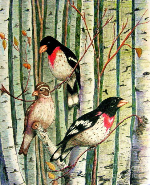 Drawing - Family Trio by Marilyn Smith