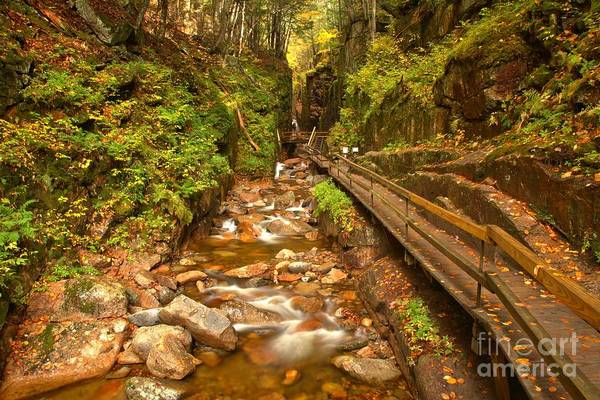 Photograph - Famous Franconia Gorge by Adam Jewell