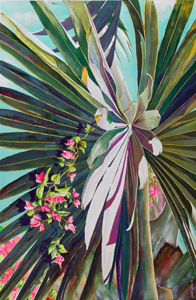 Palm Frond Wall Art - Painting - Fan Palm And Bougainvillea by Janis Grau
