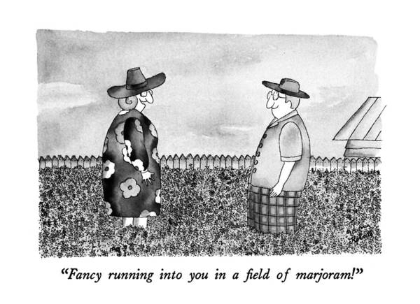 Wall Art - Drawing - Fancy Running Into You In Field Of Marjoram! by Victoria Roberts