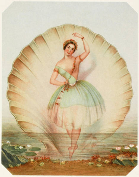 Wall Art - Drawing - Fanny Cerrito  Italian Ballet Dancer by Mary Evans Picture Library