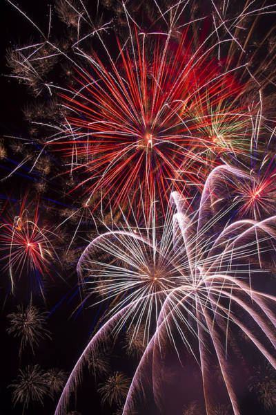 Fireworks Display Wall Art - Photograph - Fantastic Fireworks by Garry Gay