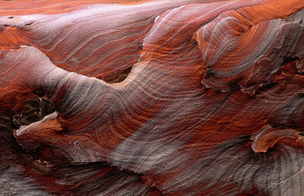 Texture Photograph - Fantastic Swirling Sandstone Patterns by Anders Blomqvist