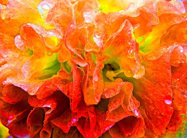 Photograph - Fantasy Flower 7 by Duane McCullough