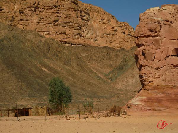 Photograph - Far Away In The Desert Sinai Egypt by Colette V Hera  Guggenheim