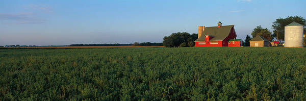 Wall Art - Photograph - Farm Fields Stelle Il Usa by Panoramic Images