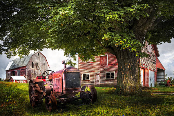Photograph - Farm Life by Debra and Dave Vanderlaan
