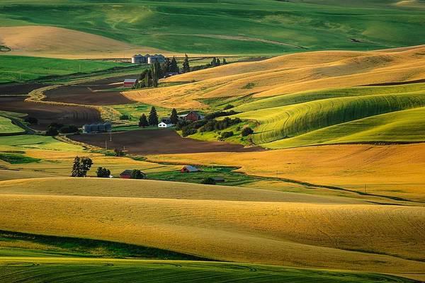 Photograph - Farm Life by Gene Garnace