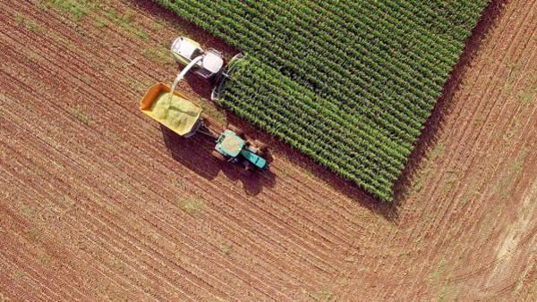 Farm Machines Harvesting Corn For Feed Or Ethanol Art Print by JamesBrey